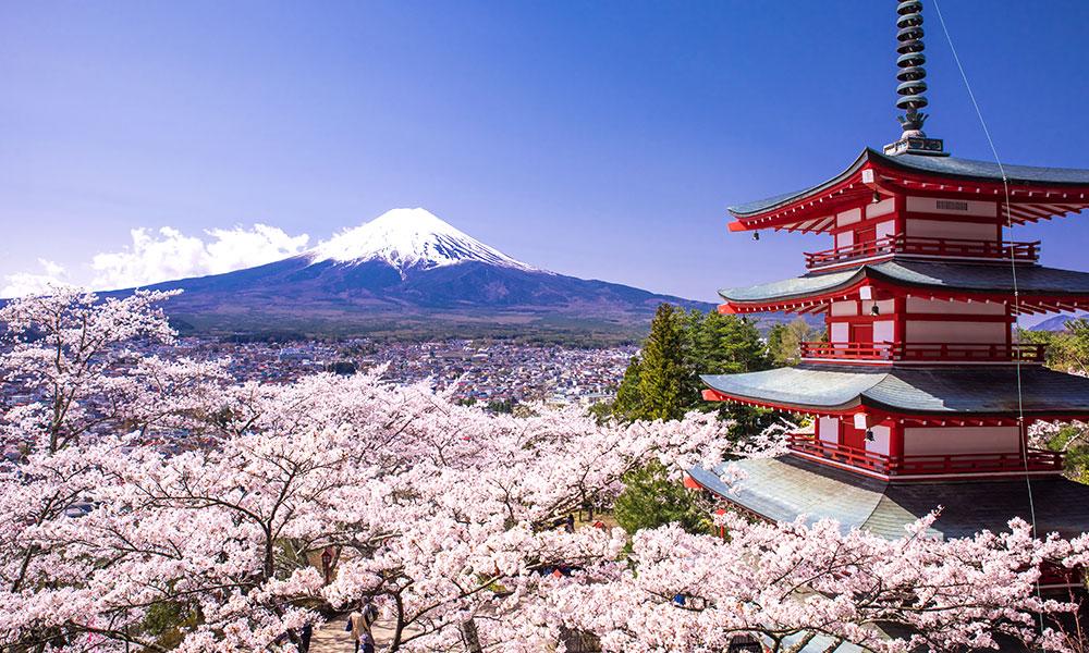 Luna de Miel Japón y Maldivas Viaje Inolvidable