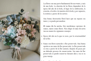 libro consejos bodas